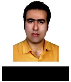 mardani_domain